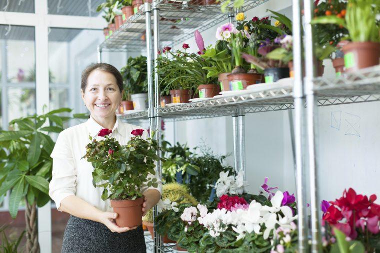 Technicien/technicienne et spécialiste de l'aménagement paysager et de l'horticulture